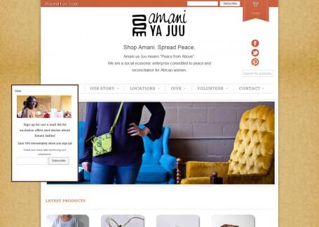 E-commerce Website Development, E-commerce Website Developer in India